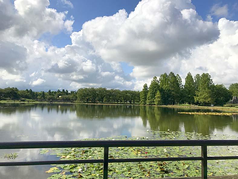 富山子供連れの遊び場【富山県中央植物園】カフェ「ココナッツアイランド」で水辺の風景を楽しもう!