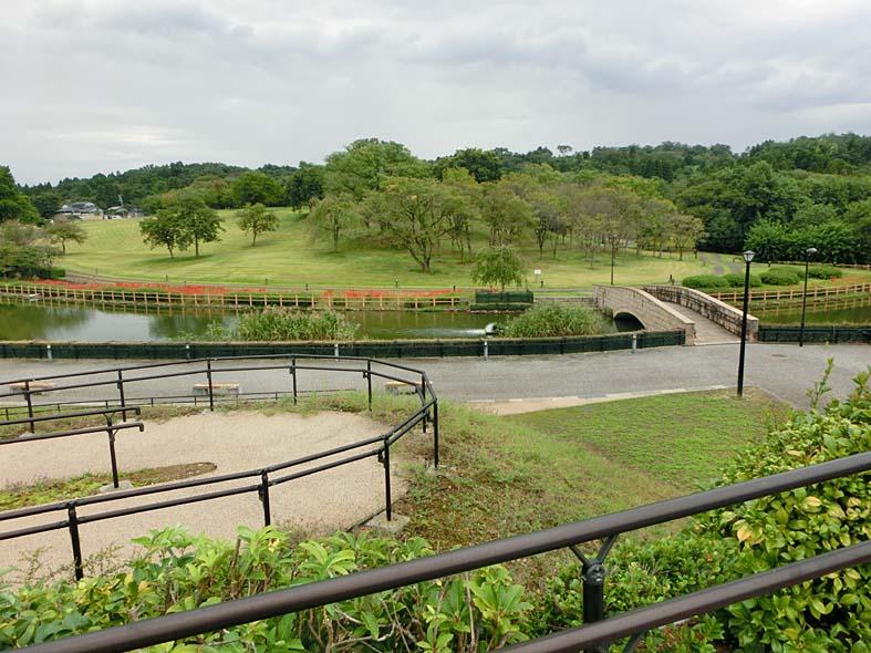 【呉羽山公園・都市緑化植物園】季節花が楽しめる散歩が楽しい公園【富山子供連れの遊び場】