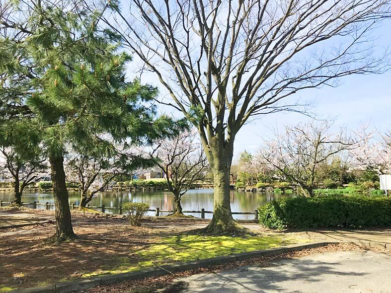 富山子供連れの遊び場【足洗潟公園】池の景色と遊具を楽しめる広い公園