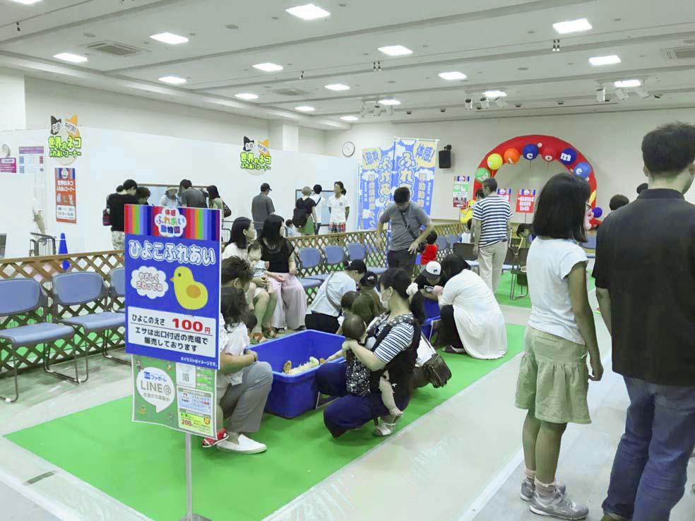 ファボーレ夏のイベント【体感ふれあい動物園2】に行ってきました!