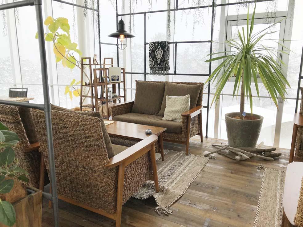 富山子供連れ歓迎のカフェレストラン【ボルカノ】&冬の【氷見市海浜植物園】