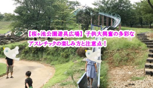 【桜ヶ池公園遊具広場】子供大興奮の多彩なアスレチックの楽しみ方と注意点!【富山子供連れの遊び場】