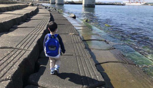 【あいの風プロムナード越ノ潟公園】富山子供連れにオススメの穴場な遊び場!海を間近に散歩できる絶景公園!【駐車場情報も】