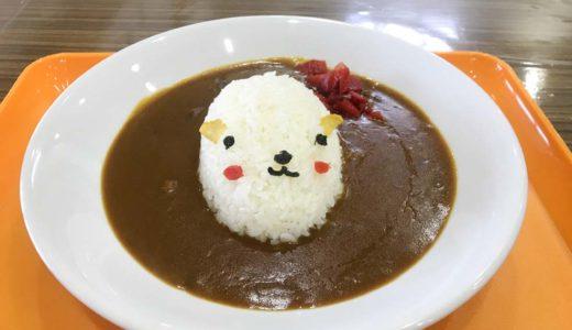【富山市ファミリーパーク】にカピバラ温泉が登場!子どもとかわいいランチを食べてきた体験談!【冬季開園時間・休園期間】