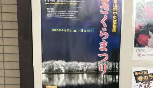 【第10回さくらまつり】「富山県中央植物園」で夜桜鑑賞会が開催決定!【会期:2021年4月2日~5日】
